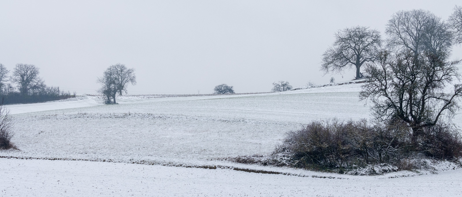 Winter20-8633